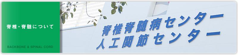 header_sekitui1